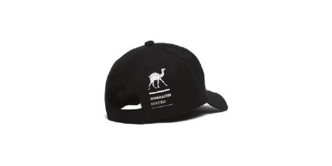 nomad_hat_2